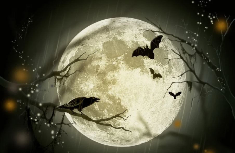halloween Day 2021